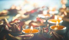 Bougies jaunes et plamennoi entourés par les pétales secs des tulipes Images stock