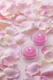 Bougies roses Image stock