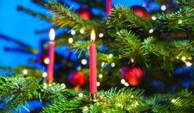 Bougies rouges dans l'arbre de Noël Photo libre de droits