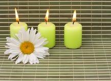Bougies vertes avec la fleur Photos libres de droits