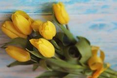 Bouguet av gula tulpan som binds med det gula satängbandet på blå träbakgrundsnärbild Royaltyfri Foto