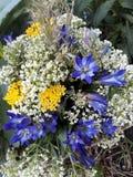 bouguet bloemen Royalty-vrije Stock Fotografie