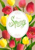 Bouguet de la primavera de tulipanes stock de ilustración