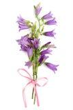 bouguet de las Alarma-flores Imagen de archivo libre de regalías