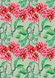 Bouguet red dahlia, watercolor, pattern seamless Stock Images