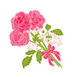 Bouguet of three roses. Vector illustration eps 8 without gradients Royalty Free Stock Image