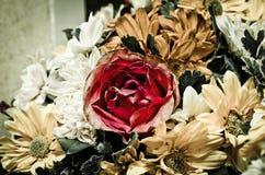 bouguetchrysanthemumen blommar red steg Royaltyfria Foton