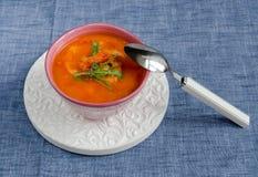 Bouillabaisse della minestra del pesce Fotografie Stock