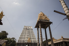14 bouilt世纪印度kamakshiamman kanchipuram nadu泰米尔人寺庙Th 库存照片