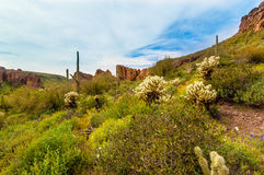 Boulder Canyon Trail Superstition Mountain Wilderness in Arizona