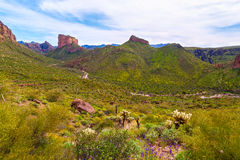 Boulder Canyon Trail Superstition Mountain Wilderness in Arizona Royalty Free Stock Photo