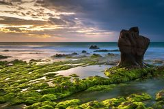 Nature Seascape with Exotic Boulder, Rocks and Green Mosses at Dawn royalty free stock photography