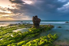 Nature Seascape with Boulder, Rocks and Green Mosses at Sunrise royalty free stock photos
