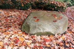 Boulder entre las hojas caidas Imagen de archivo libre de regalías