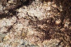 Boulder et champignon foncé Photos stock