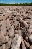 Boulder Field at Hickory Run State Park Stock Image
