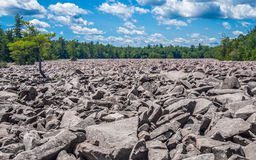 Boulder field in Hickory Run State Park. Pennsylvania Stock Images