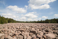 Boulder Field at Hickory Run State Park Royalty Free Stock Photography