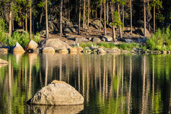 Boulder in the Lake. Triangular boulder juts out in a lake that reflects pine trees Stock Photo
