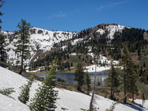 Mountain lake with trees and snow Royalty Free Stock Photography