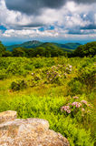 Boulder in a meadow and view of Old Rag Mountain at Thoroughfare royalty free stock photo