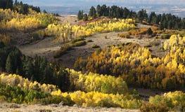 BOULDER MT, UT - 2016-09-30 fall color -01g Stock Photos