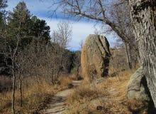 Boulder na fuga Imagens de Stock Royalty Free
