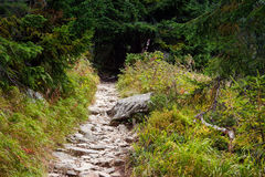 Boulder road to High Tatra mountains Royalty Free Stock Photo
