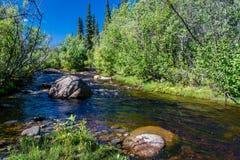 Boulder on an small Alaskan stream Stock Photos