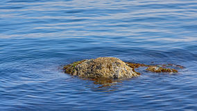 Boulder sticking out of the water surface. Granite boulder in deep blue calm rippling water stock photography