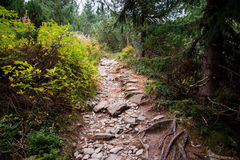 Boulder-Straße zu hohen Tatra-Bergen stockfotos