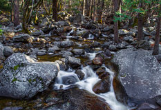 Boulder Strewn Creek. Small Forest Stream Cascading Along Boulder Strewn Channel Stock Image