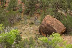 Boulder in the wilderness Royalty Free Stock Photos