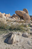 Boulders Stock Photography