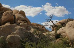 Boulders at Barker Dam, Joshua Tree National Park, California. Geological rock formations abound throughout Joshua Tree National Park, like this one at Barker stock images