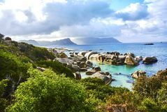 Penguins in boulder& x27;s beach cape-town south-africa with seaside. Boulders Beach is a sheltered beach made up of inlets between granite boulders, from which stock image