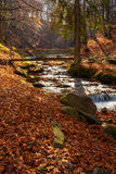Boulders and bridge near forest creek in autumn. Boulders in foliage near wooden bridge over creek in  forest on sunny autumn day Stock Photography
