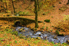 Boulders and bridge near forest creek in autumn. Boulders in foliage near wooden bridge over creek in  forest on sunny autumn day Stock Photos