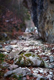Boulders in a canyon Royalty Free Stock Photography