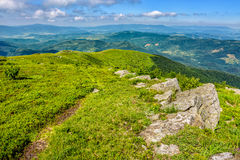 Boulders on the Carpathian hillside. White sharp boulders on the hillside meadow with green grass in high Crapathian mountains Stock Photos