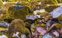 Boulders close up, stacked. Various brown and mottled boulders close up, stacked, some of them overgrown with moss and grass royalty free stock photography