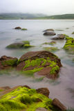 Boulders covered green seaweed in misty sea. Big boulders at Irish coast covered with green seaweed long exposure makes seawater look like mystery fog Royalty Free Stock Images