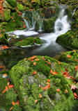 Boulders and creek. With waterfalls in autumn Stock Photography