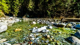 Boulders in the crystal clear water of Cascade Creek right after the falls in Cascade Falls Regional Park, British Columbia Canada. Boulders in the crystal clear royalty free stock images