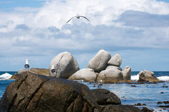 Boulders False Bay Royalty Free Stock Image
