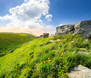 Boulders on hillside in high mountains at sunrise. Huge boulders on the top edge of hillside with grass and dandelions in high mountains in morning light Stock Photos