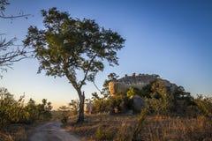 Boulders landscape in Kruger National park, South Africa Royalty Free Stock Photos