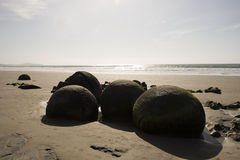 The Boulders at Moeraki beach, New Zealand Royalty Free Stock Photos