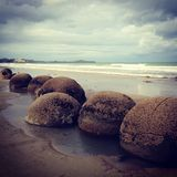 Boulders of Moeraki Stock Photography