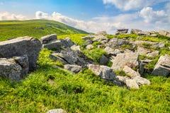 Boulders on the mountain meadow Stock Photos